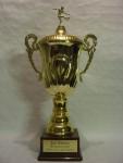 Pokal Juxturnier